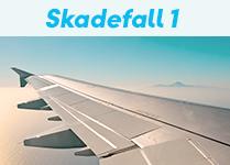 Skadefall - flygförsening