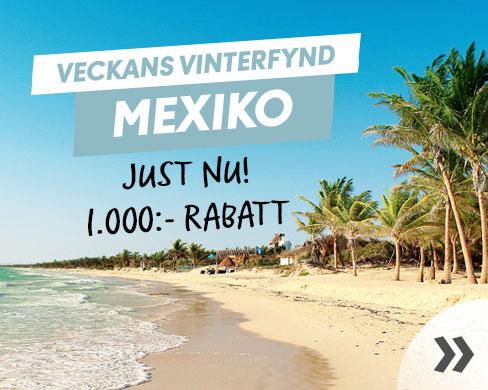 Veckans vinterfynd Mexiko