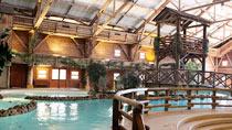 Disney's Davy Crockett Ranch® inklusive entrébiljetter - familjehotell med bra barnrabatter.
