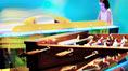 För ungdomar, Sunwing Arguineguín Seafront